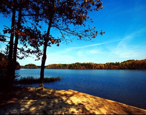 Neighborhood choice realty burke for Burke lake fishing