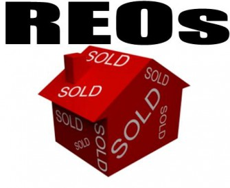What is a REO?