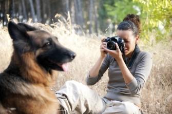 dog-photographer